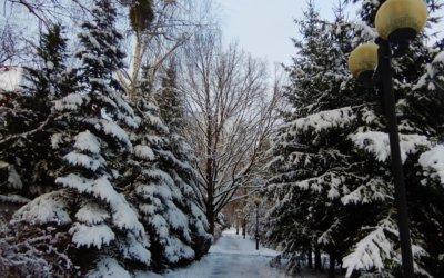 Zima 2021 na Osiedlu Brzeziny